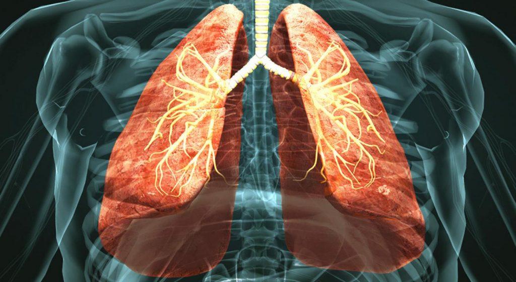 rimedi naturali vie respiratorie